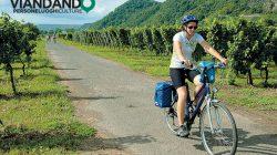 Viva la bicicletta!